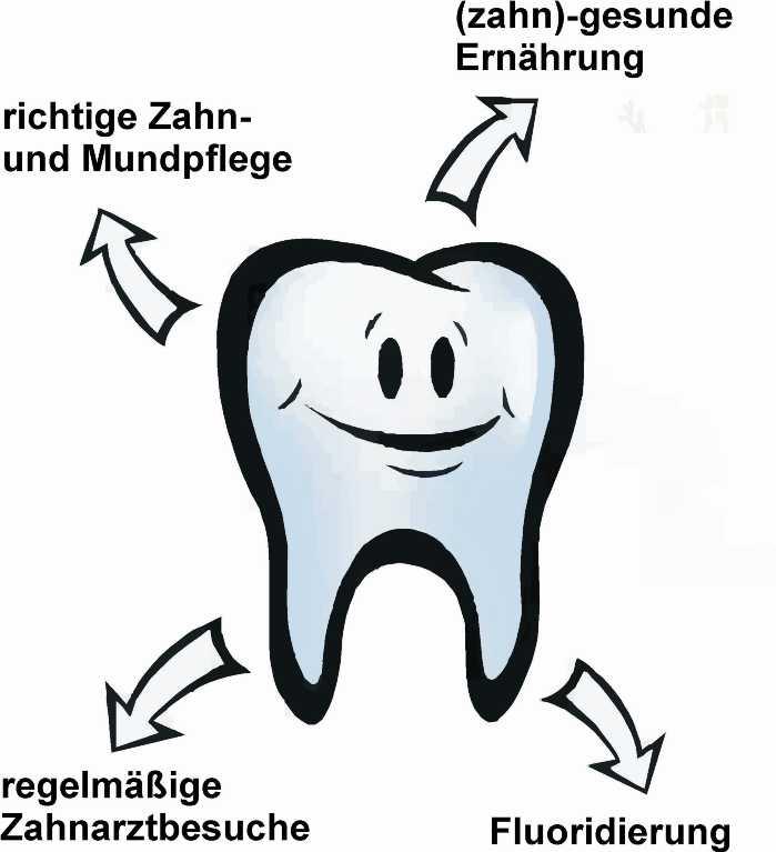 """Bild vom """"Zahnkonzept"""" - Vier Säulen der Gruppenprophylaxe"""
